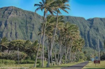 Welcome to Kalaupapa, Molokai
