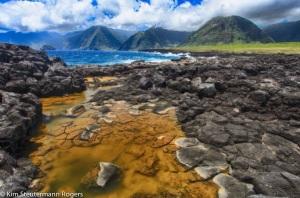 Tidepools and Molokai's Famous Sea Cliffs