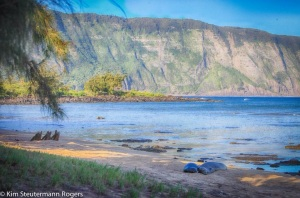 Morning View of Hawaiian Monk Seals and Molokai Sea Cliffs