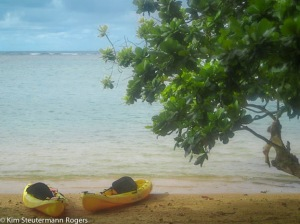 pair of kayaks on beach
