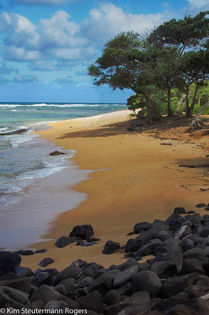 beach, hurricane, iselle