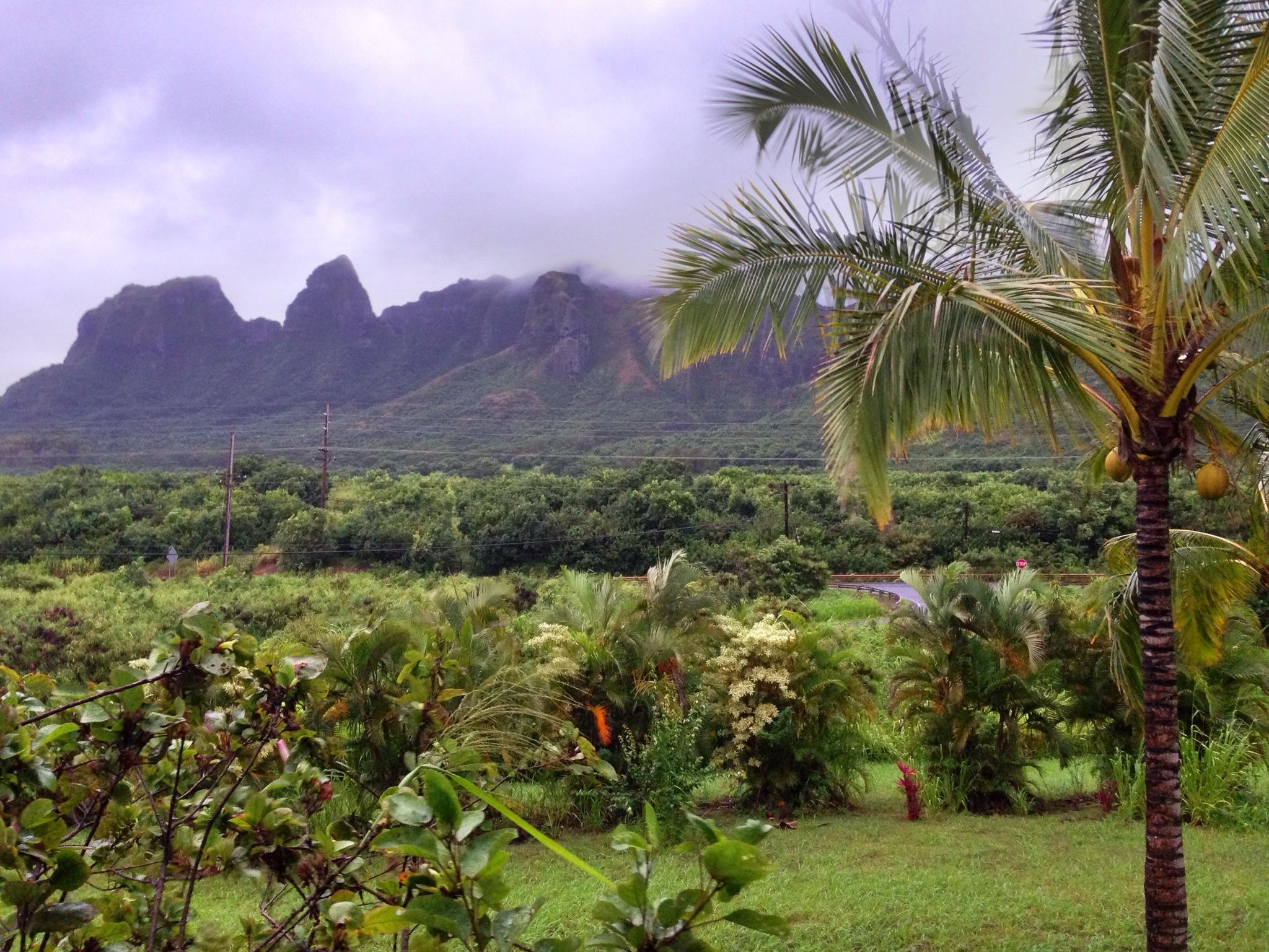 hurricane ana view of kalalea
