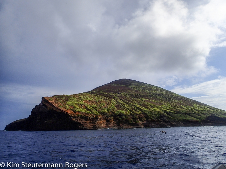 The Hawaiian Island of Lehua