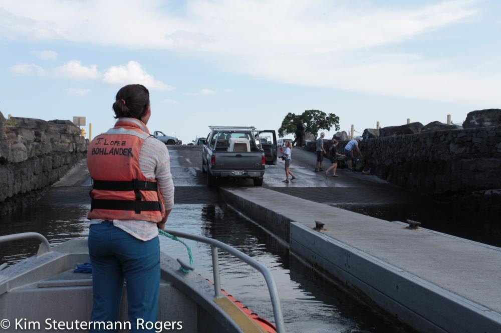 Hawaiian monk seal offload at Kona complete