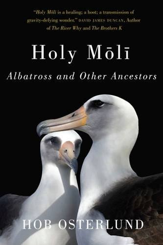 Holy Mōlī: Albatross and Other Ancestors