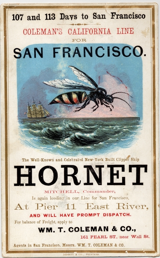 Clipper_ship_Hornet_sailing_card